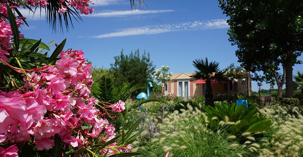 Mobil-home sur un emplacement fleuri avec lauriers roses et pampa au camping Sainte Cécile