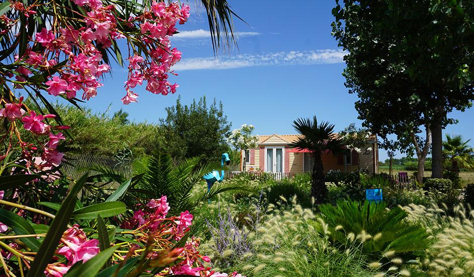 cottage au milieu de la nature, camping arboré, lauriers roses, palmiers, décoration pampa
