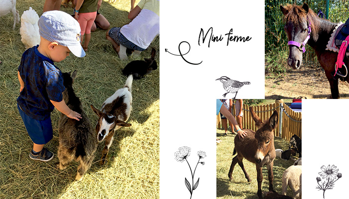 mini farm in Vias Plage campsite, family activity, animals, pony, duck, goat