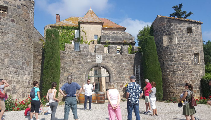 Guided tour of the vineyard cultural outing
