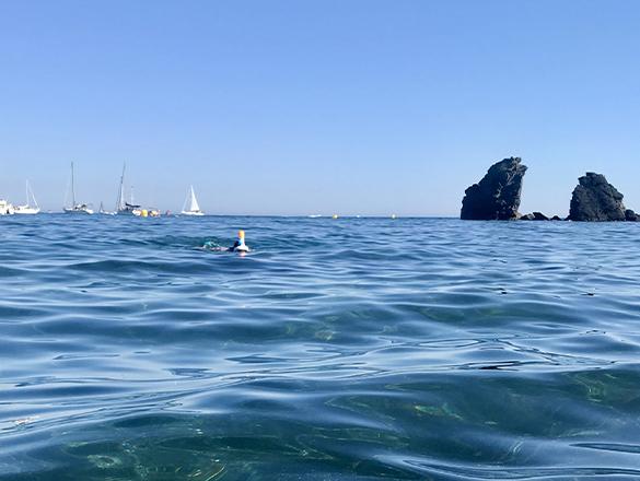 Snorkeling, Schwimmen, Wasseraktivitäten in Cap d'Agde